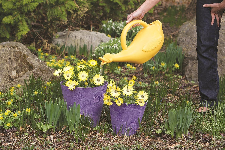 lucky duck watering can yellow 1 gallon amazon co uk garden