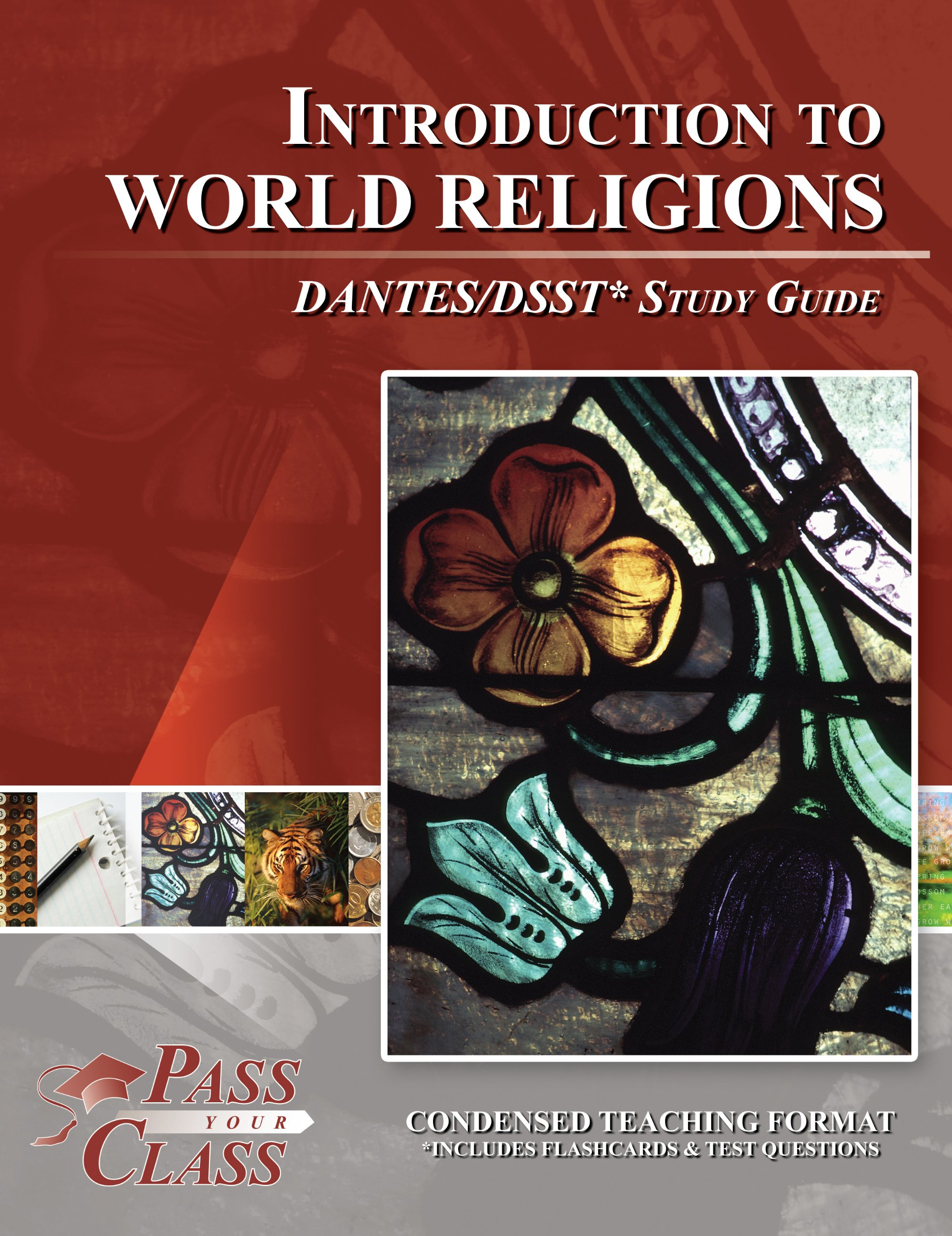 Dsst introduction to world religions dantes study guide dsst introduction to world religions dantes study guide passyourclass 9781614330547 amazon books xflitez Gallery