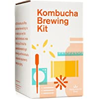 Kombucha Kit de Preparación con Kombucha–scoby. Incluye Brew de vidrio Jar orgánicos, kombucha Hojas Sueltas té orgánico, la temperatura Gauge, azúcar y más.