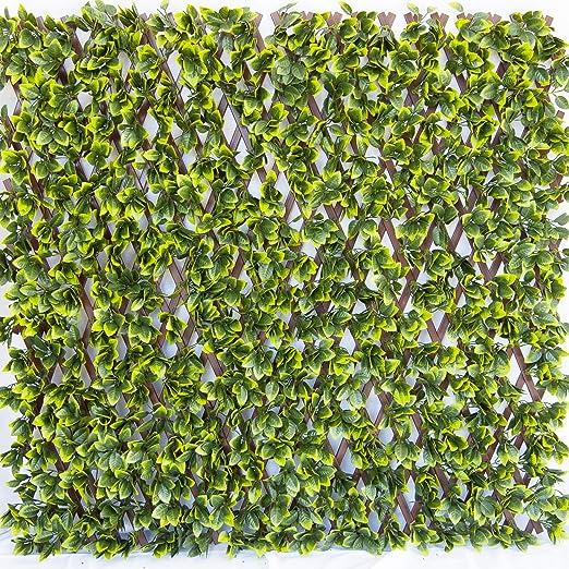 Tenax - Seto Artificial con Hojas 3D en Malla Extensible de PVC, Divy 3D Trellis, 1 x 2 m: Amazon.es: Jardín