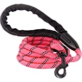 Strong Dog Leash, Reflective Rope, Chew Resistant Paracord for Medium and Large Dogs, Durable Metal Clasp, Attaches to Pet Co