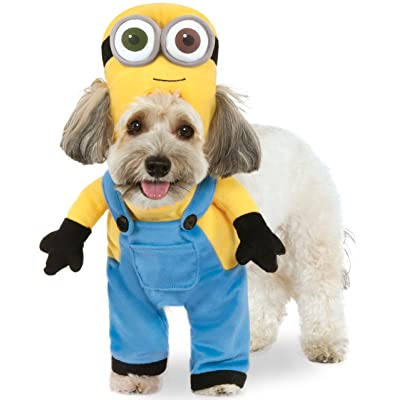 Minion Bob Arms Pet Suit, Large: Toys & Games