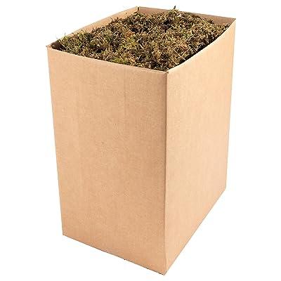 SuperMoss (23816) Mountain Moss Dried, Natural, 5lbs : Garden & Outdoor