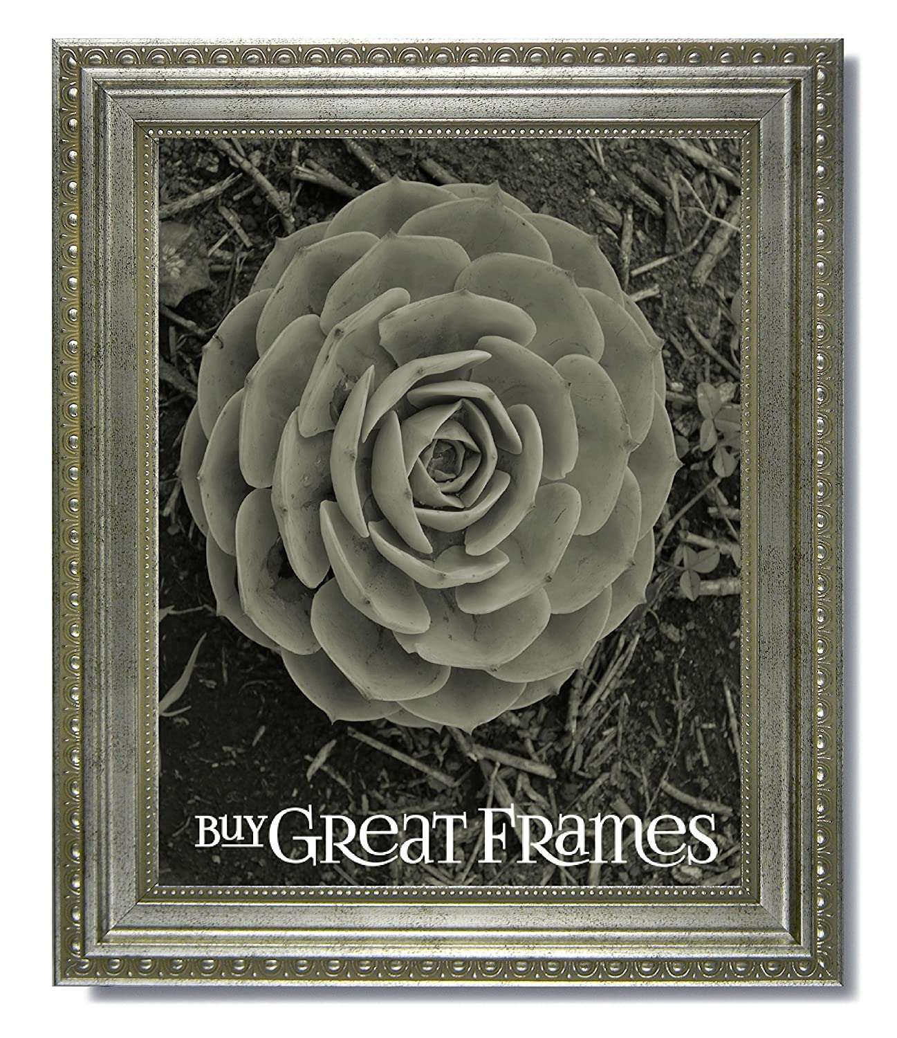 Amazon.com - One 16x20 Ornate Heritage Silver Picture Frame and ...