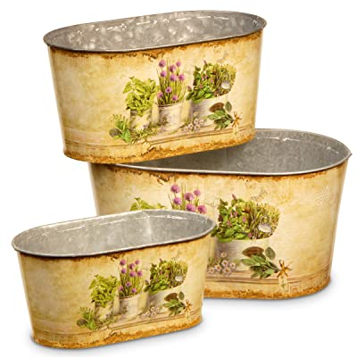 National Tree Set of 3 Assorted Oblong Shaped Painted Tin Pots (RAS-HJRS15070): Home & Kitchen