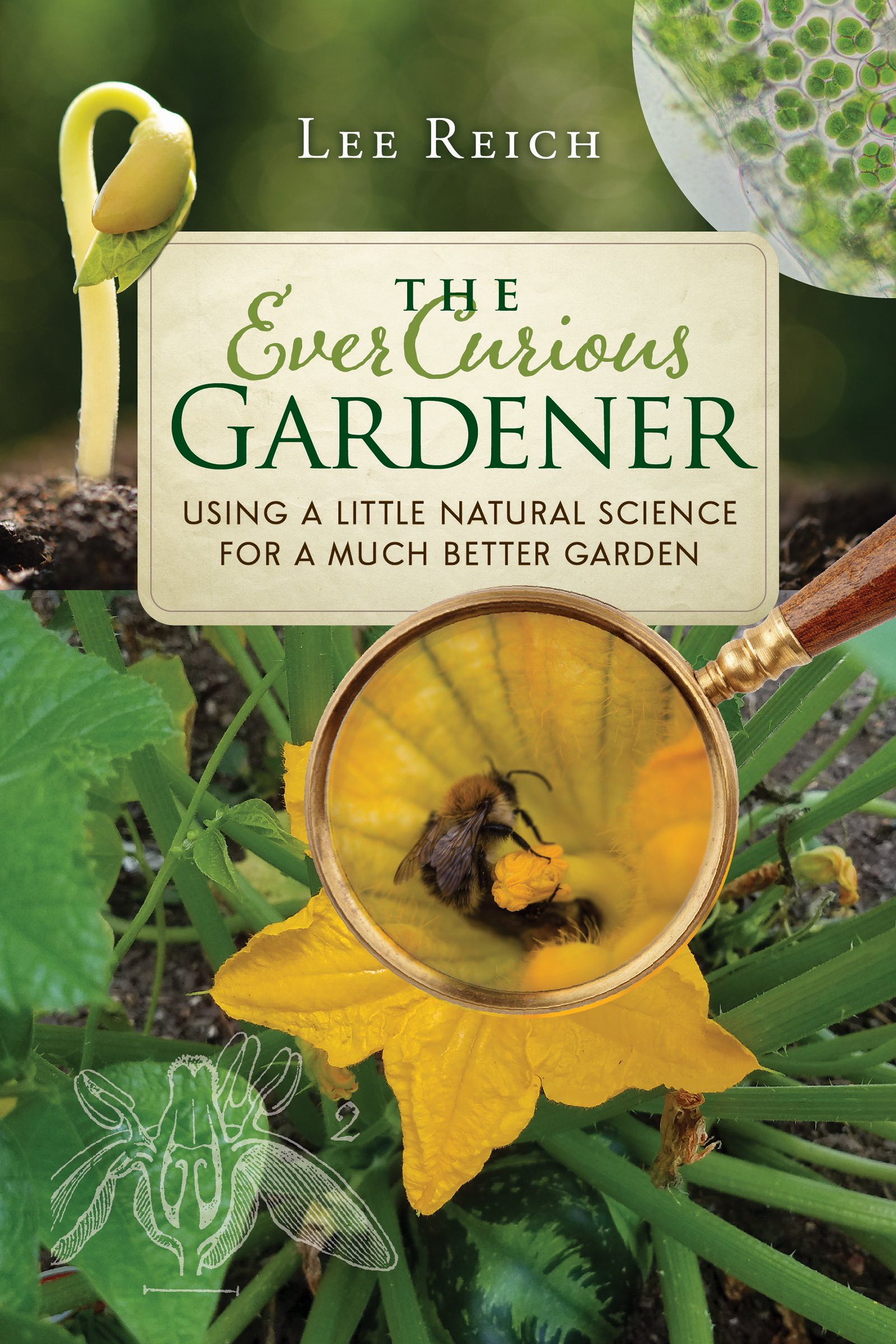 The Ever Curious Gardener: Using a Little Natural Science for a Much ...