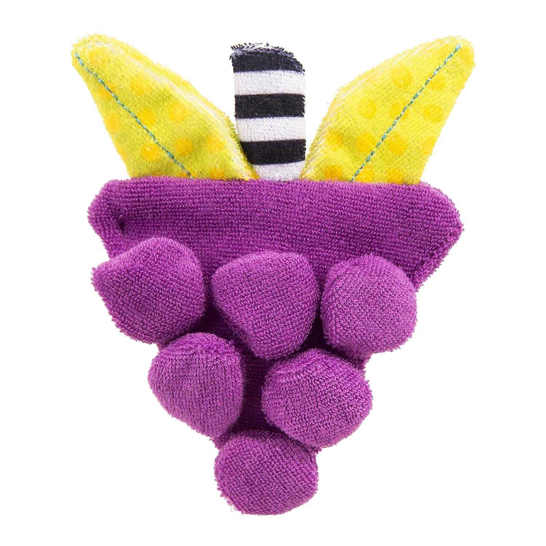 格安販売中 Sassy Terry Teether, Sassy Teether, Freezies Grapes Sassy by Sassy B009VSD70C, the Gift by fp:f6d8797c --- a0267596.xsph.ru