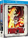 Fairy Tail: Collection Nine [Blu-ray]