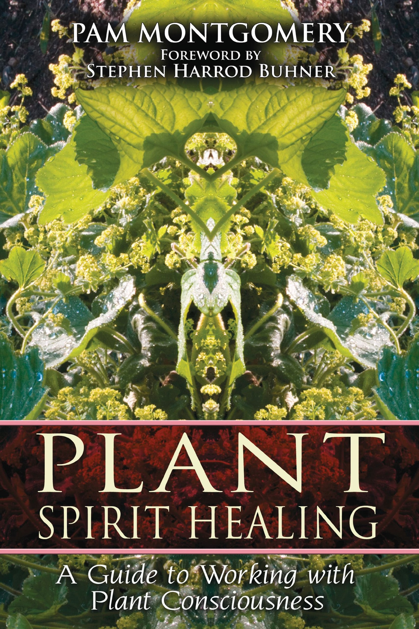 Plant Spirit Healing Working Consciousness product image