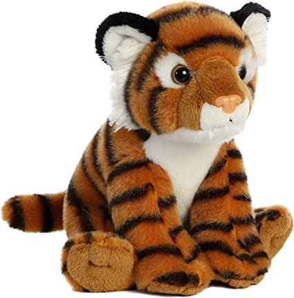 8 Bengal Tiger Aurora Destination
