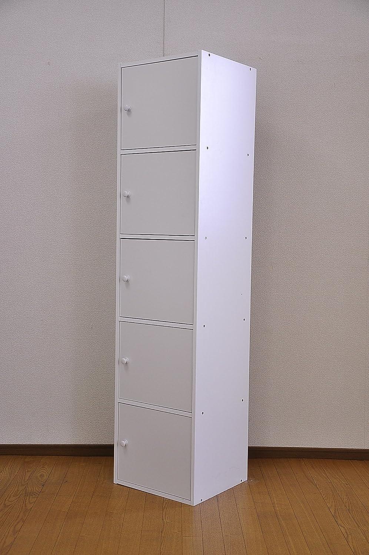 マルチカラーボックス 5D 【NEST】 5ドアタイプ ET-T5D (ホワイト) B004WIOK4I  ホワイト