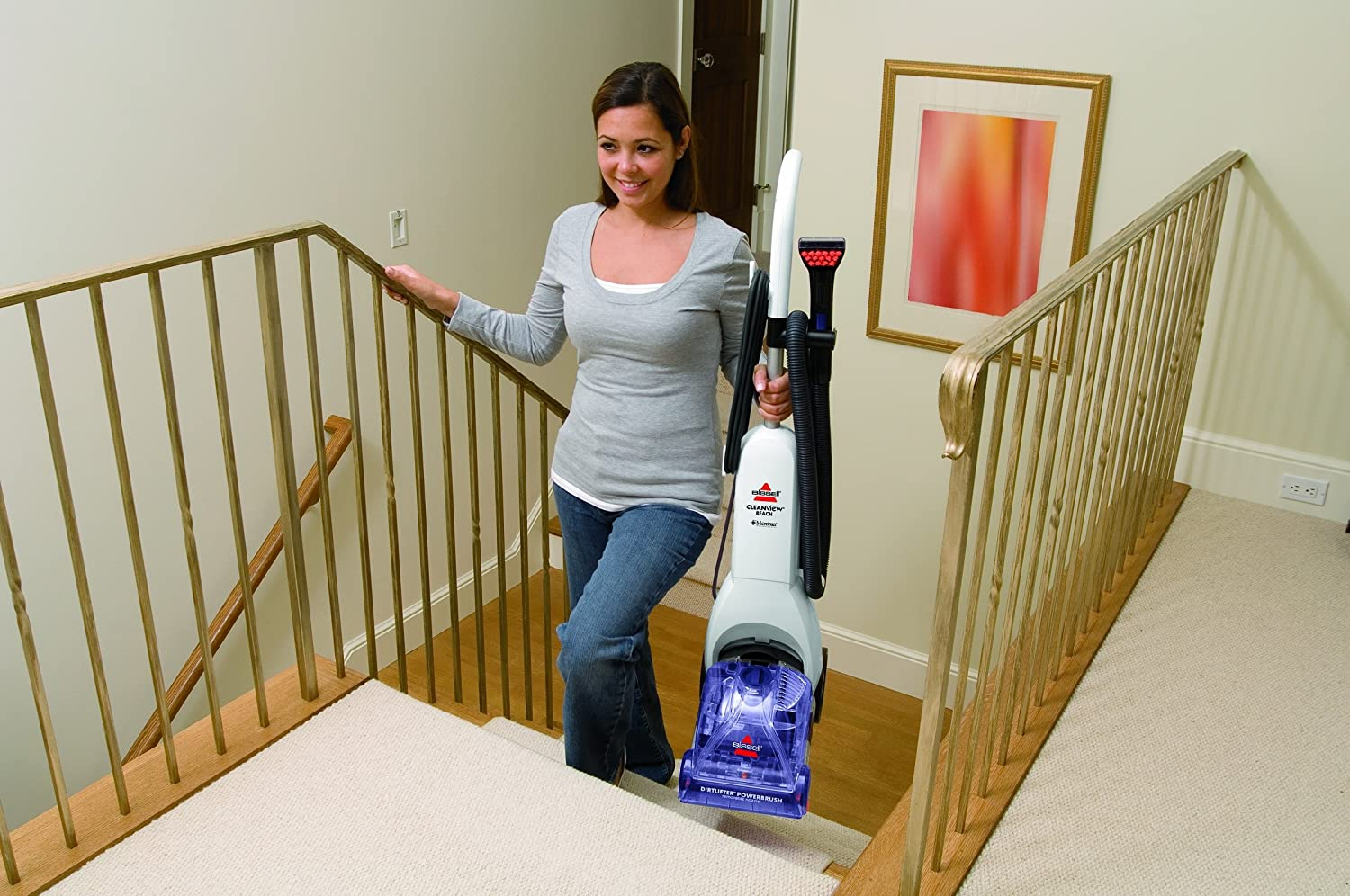 Which carpet cleaner?