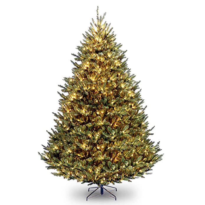 National Tree Company 9 ft. Natural Fraser Medium Fir Tree with Clear Lights