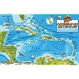 Costa Rica Dive Map & Caribbean Reef Creatures Guide Franko Maps ...