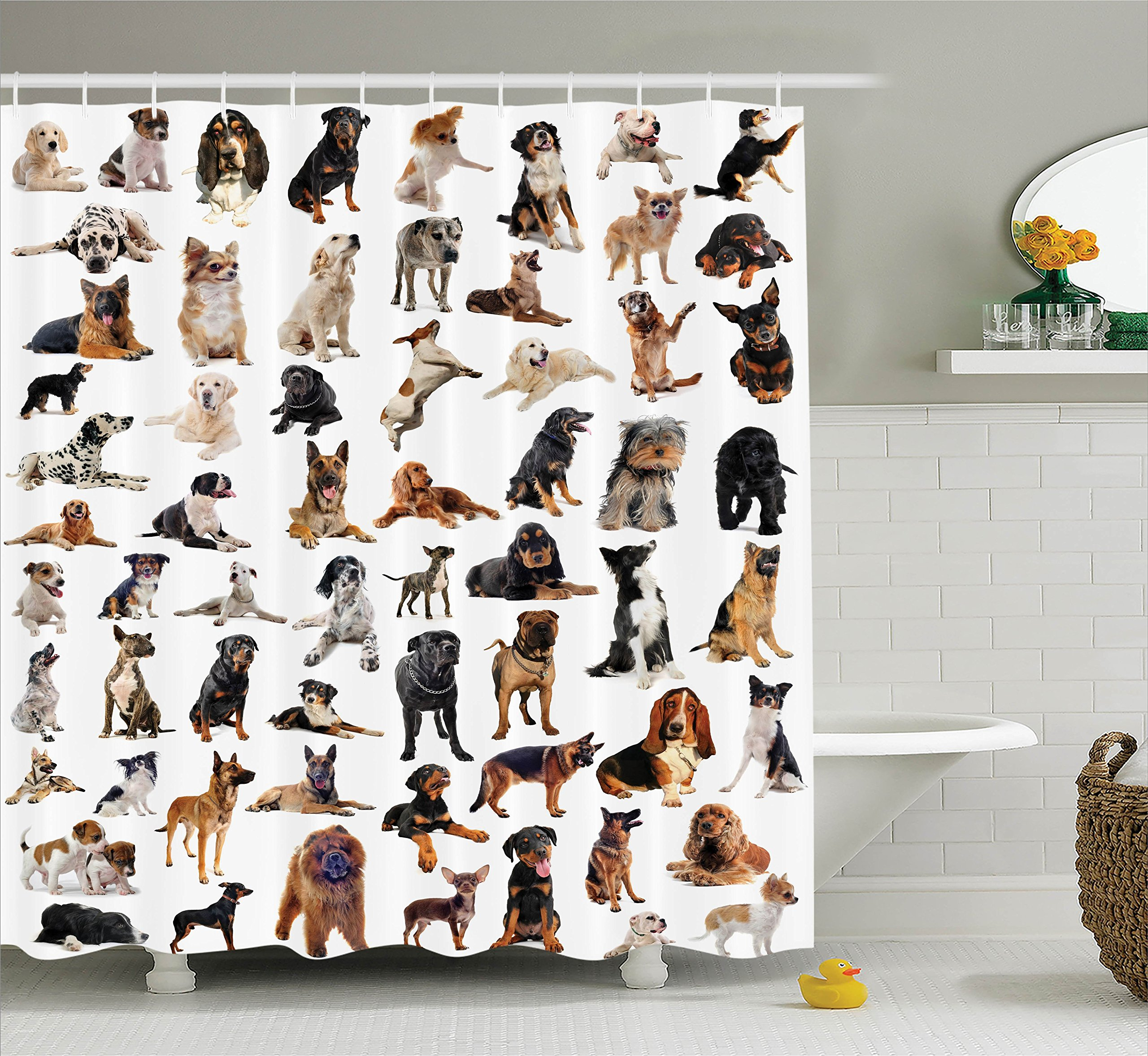 Ambesonne Dog Lover Decor Collection, Picture with Purebred Dogs Australian Sheepdog Belgian Boxer Italian Mastiff, Polyester Fabric Bathroom Shower Curtain Set with Hooks, Brown Black