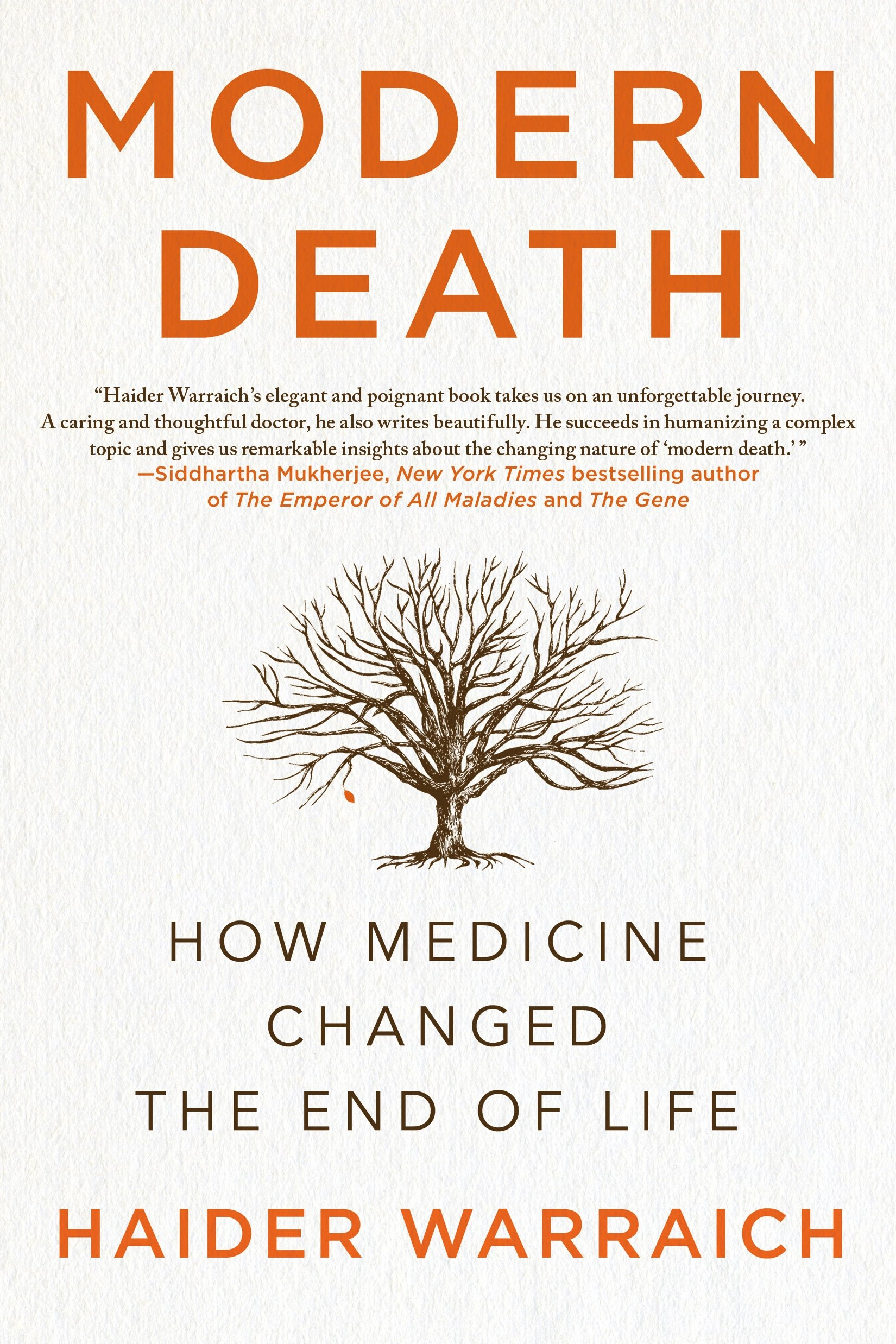 Modern Death  How Medicine Changed The End Of Life  English Edition