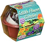 DuneCraft Edible Flowers Garden Science Kit