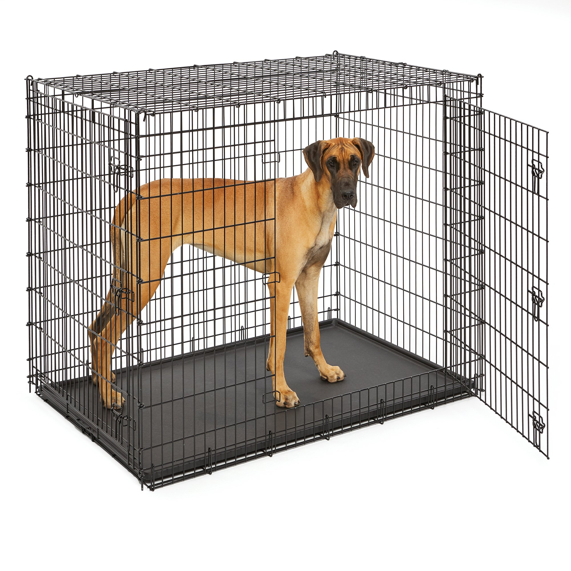 MidWest Extra Large Dog Breed (Great Dane) Heavy Duty Metal Dog Crate w/ Leak-Proof Pan, Double Door Giant Dog Crate measures 54L x 37W x 45H Inches & Weighs 80.2 lbs.