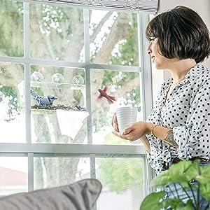 Tranquil Outdoors Large Acrylic Window Bird Feeder