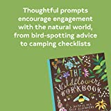 The Wildflower's Workbook: A Journal for