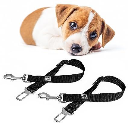 EVERANIMALS Cinturón De Seguridad para Perros | Correa Ajustable Y Resistente | Apta para Todos Los ...