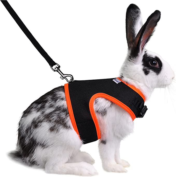 chest mobility rabbit harness Wicked Purple Harness pet harness adjustable rabbit harness Rabbits bunny harness Rabbit Harness