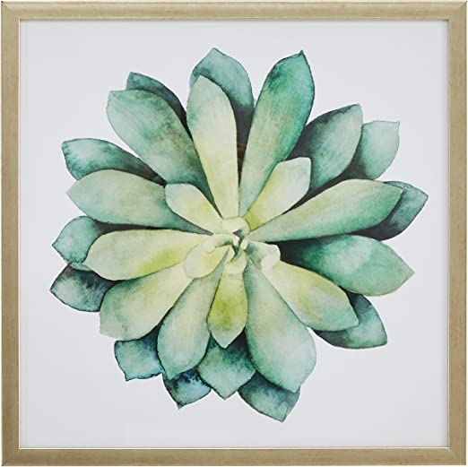 I Think You Are Succulent Home Decor Wall Art