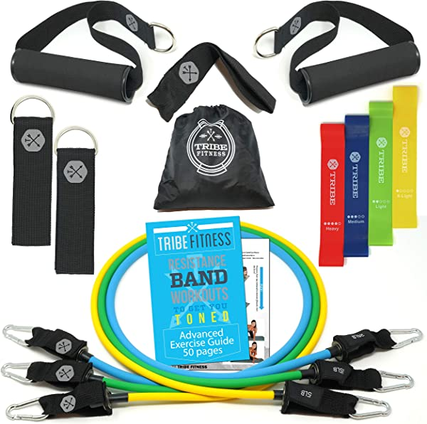 Resistance Bands Set Bundled with Loop Bands I Exercise Bands with Stackable Workout Bands, Door Anchor, Handles, Ankle Straps & Advanced eBook
