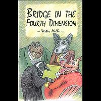 Bridge In The Fourth Dimension (English Edition)