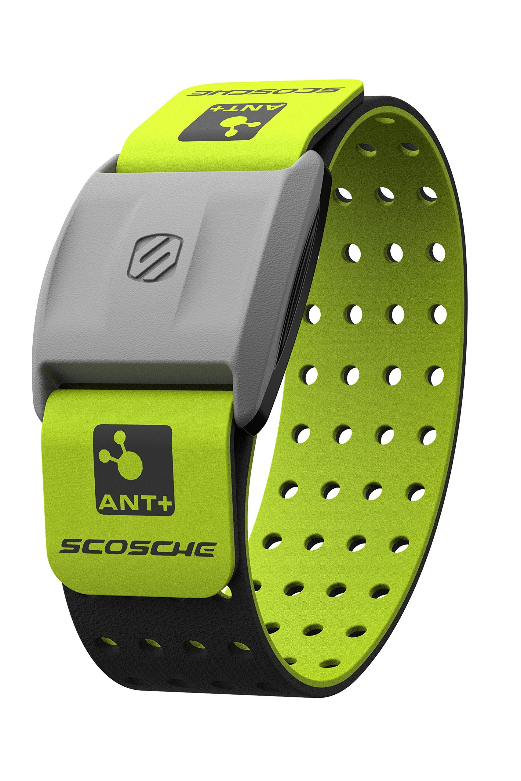 Scosche RHYTHM+ Heart Rate Monitor Armband - Green - Optical Heart Rate Armband Monitor With Dual Band Radio ANT+ and Bluetooth Smart