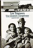 Les Tsiganes : Une destinée européenne