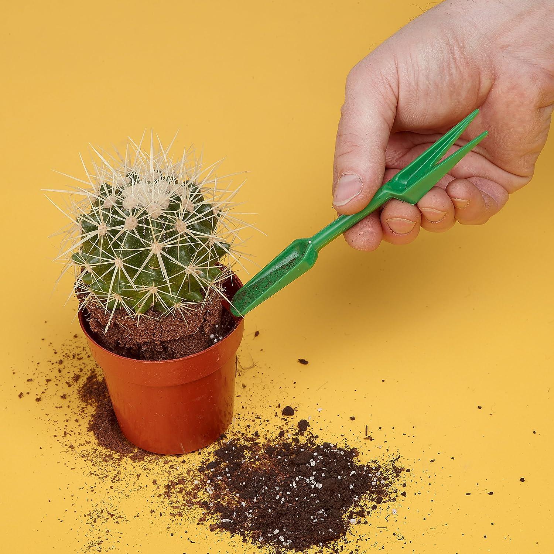 /Herramientas para el Trasplante de cactus El Cactus umtopf Juego 2/