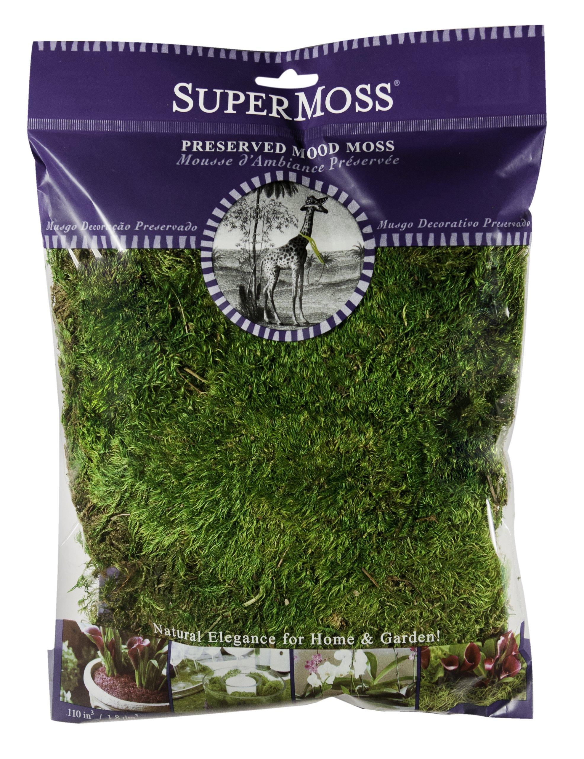 SuperMoss (21542) Mood Moss Preserved, Fresh Green, 4oz by Super Moss