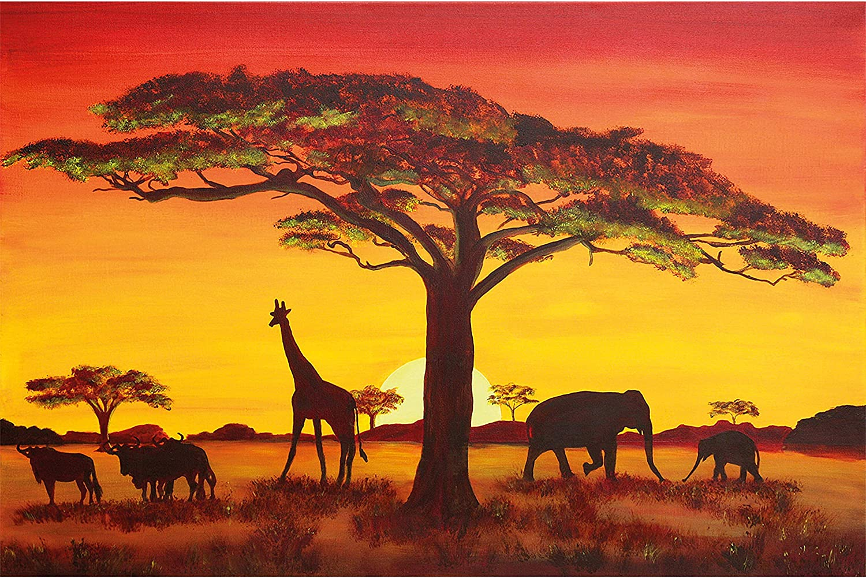 91x61cm Sonnenuntergang Savanne Akazie Baum Poster Plakat Afrika #54509