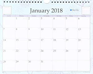 "Blue Sky 2018 Wall Calendar, Twin-Wire Binding, 11"" x 8.75"", Rue Du Flore"