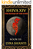 The Riddle of the Gods (The Shiva XIV Series Book 3)