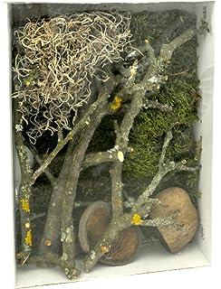 liane rettili  Rettili Planet Giungla Liana Liane artificiale decorazione per ...