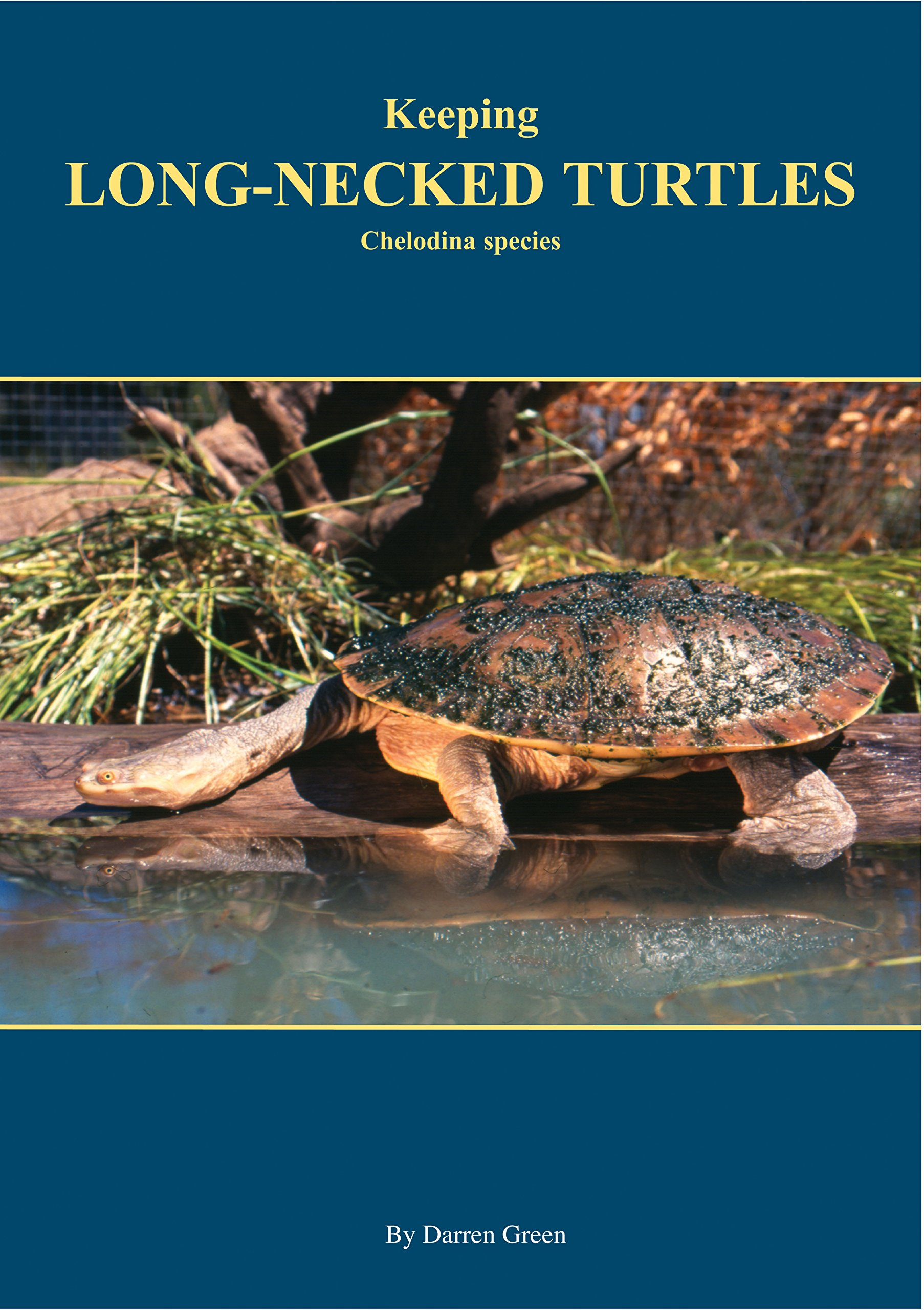 Download Keeping Long-necked turtles: Chelodina species PDF