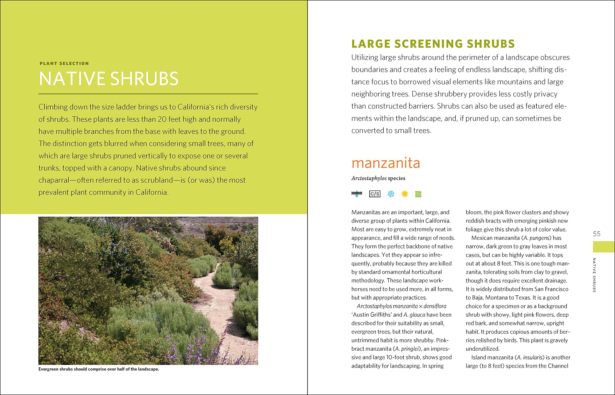 The Drought-Defying California Garden: 230 Native Plants for a Lush, Low-Water Landscape by Timber Press (Image #5)