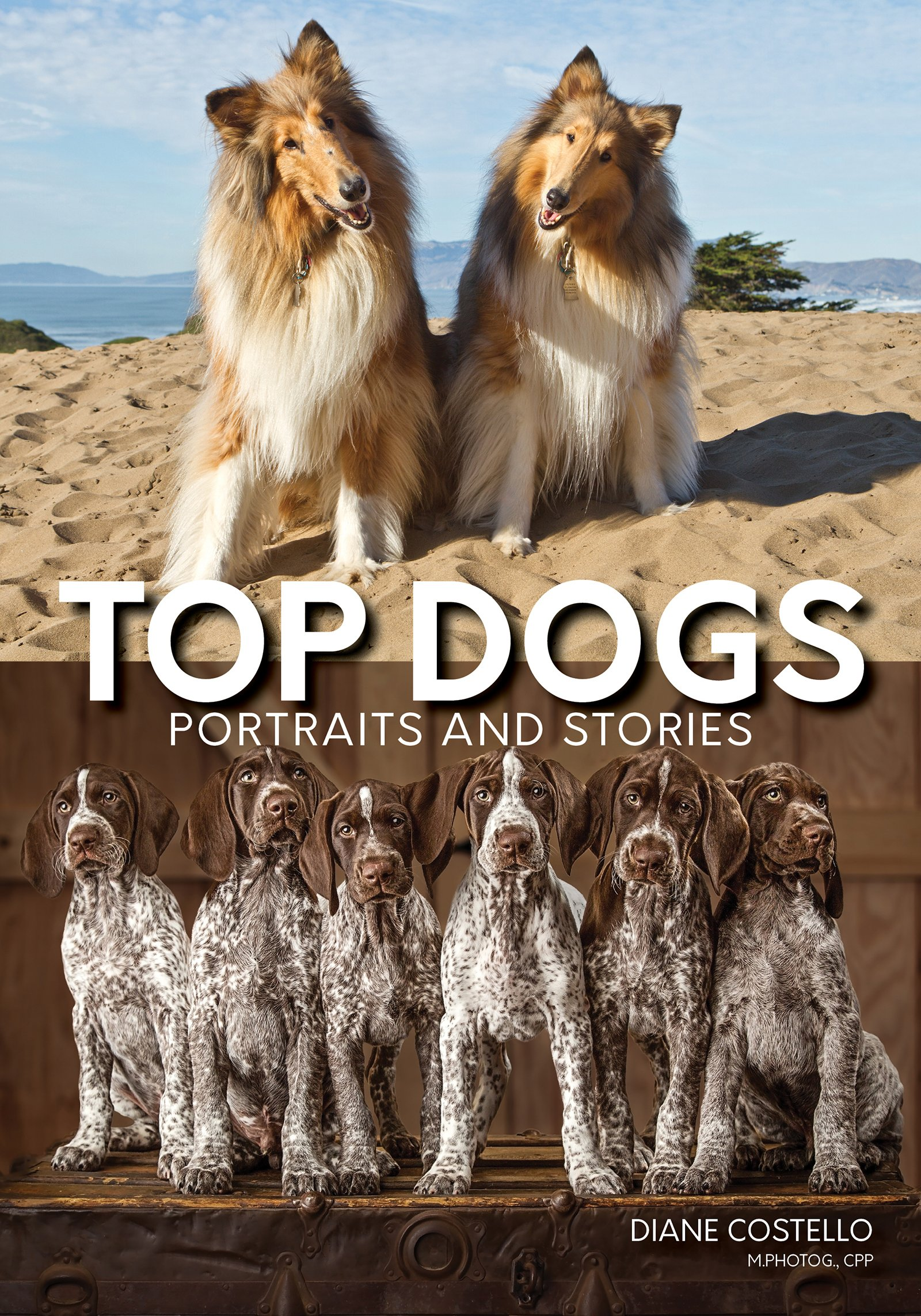 Top Dogs: Portraits and Stories