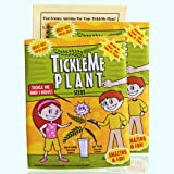 TickleMe Plant Seeds Packets (2) for Party Bag or Christmas Stocking Stuffer! Leaves Fold Together When You Tickle It…