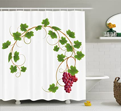 Ambesonne Grapes Home Decor Shower Curtain Curved Ivy Branch Deciduous Woody Wines Seed Clusters Cabernet