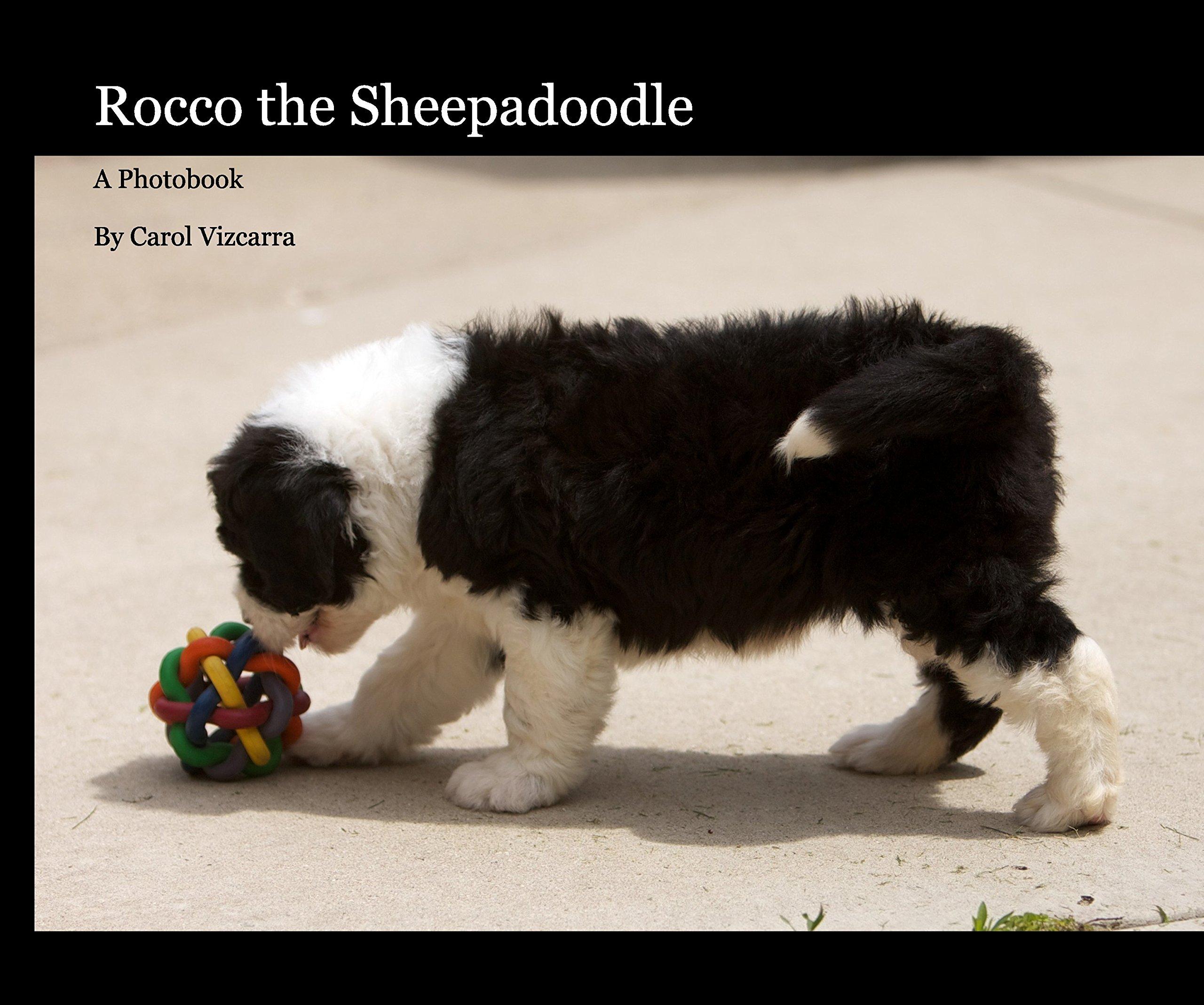 Download Rocco the Sheepadoodle (26 page) ebook