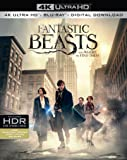 Fantastic Beasts and Where To Find Them [4K UHD] [2016] [Blu-ray]