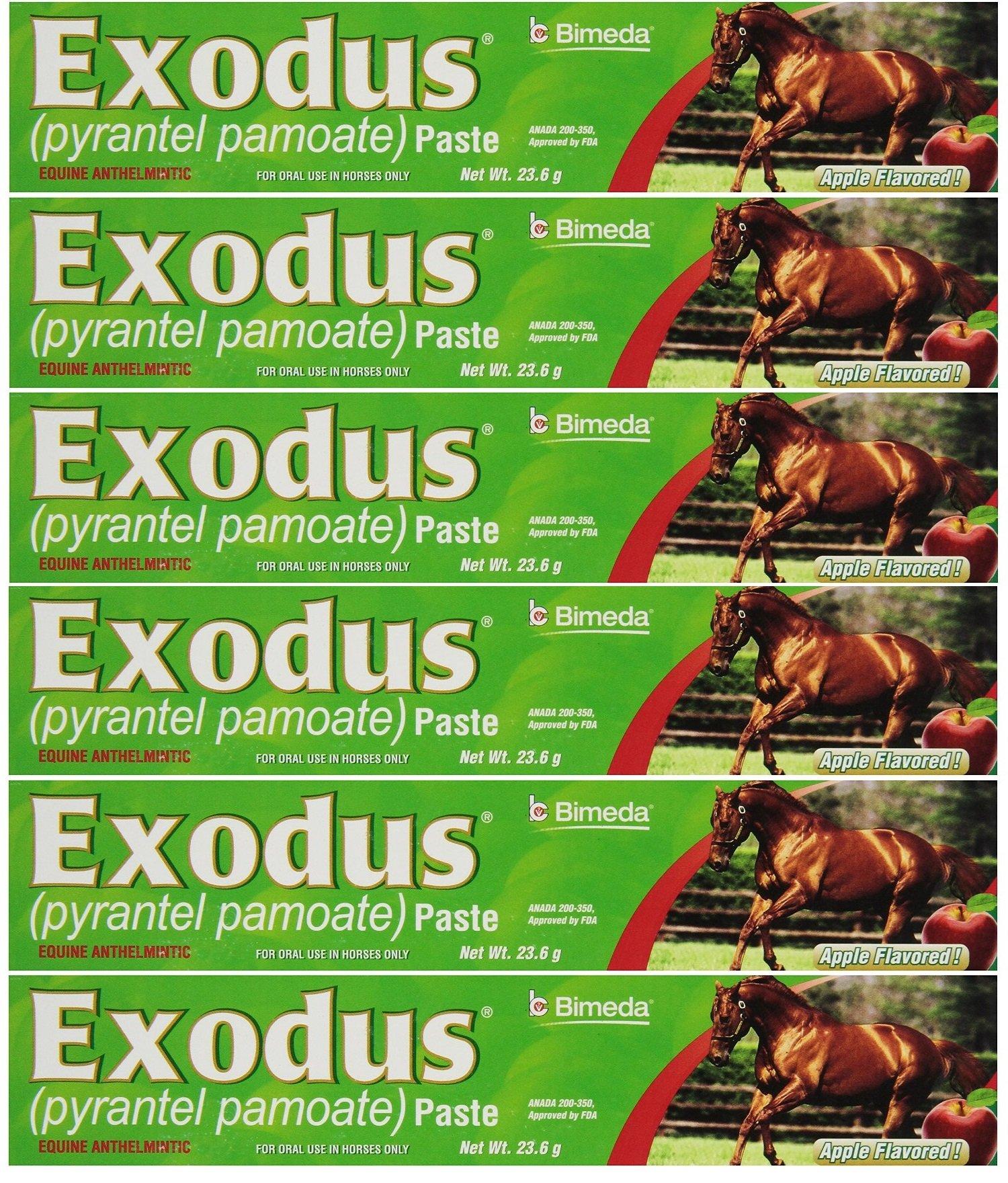 BIMEDA Pyrantel Paste Horse 23.6g wormer Equine Parasite Exodus (Pamoate Strongid) OTC 6 Pack by BIMEDA