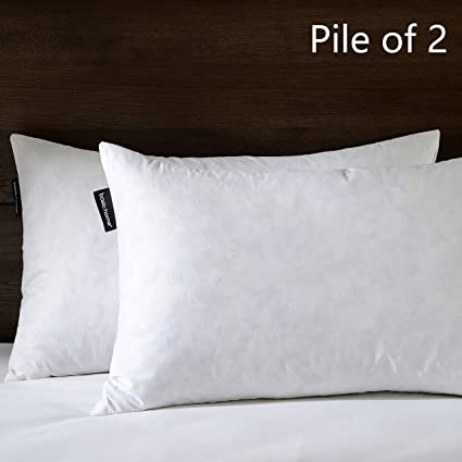 Amazon BASIC HOME 40X40 Oblong Feather Down Pillow Insert Amazing Feather And Down Pillow Inserts