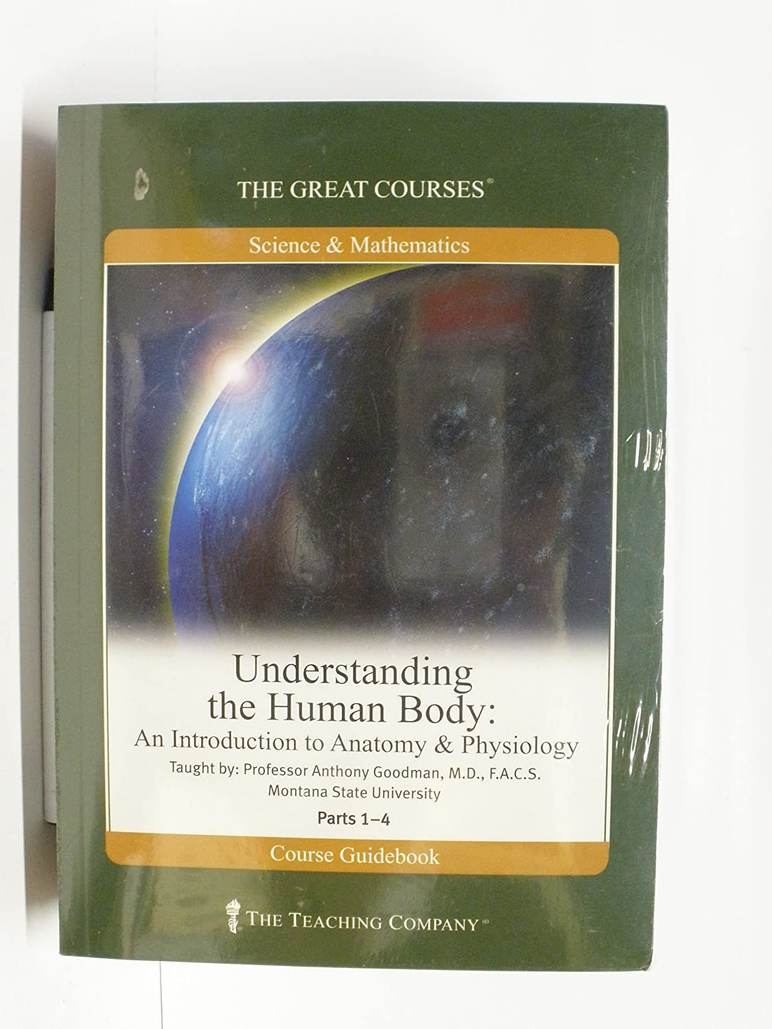 Amazon.com: Understanding the Human Body : An Introduction to ...