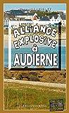 Alliance explosive à Audierne: Un polar régional captivant (Enquêtes & Suspense)