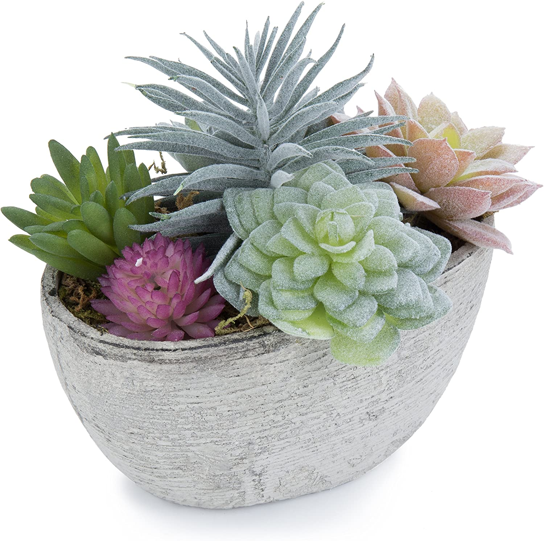 Amazon Com Mygift 7 Inch Assorted Artificial Succulent Plants In Rustic Textured Pulp Pot Plant 1 Garden Outdoor