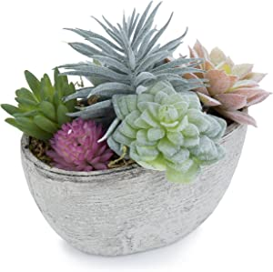 MyGift 7-Inch Assorted Artificial Succulent Plants in Rustic Textured Pulp Pot (Plant 1)